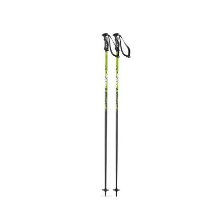 Adult Ski Poles